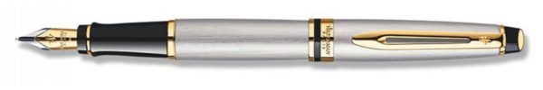 Waterman Expert Stainless Steel Fountain Pen GT